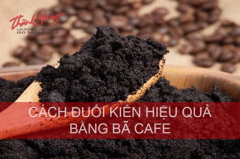 Cách diệt kiến bằng cà phê
