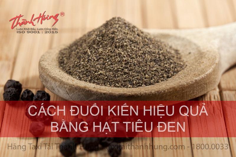 Cách đuổi kiến trong nhà bằng hạt tiêu đen