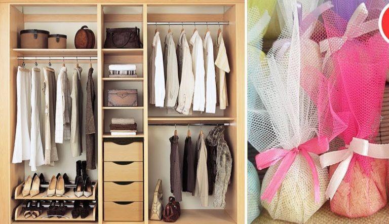 Tận dụng những sản phẩm tjieen nhiên trong bảo quản quần áo